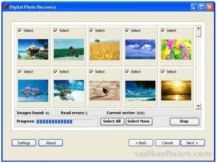 Art Plus Digital Photo Recovery 5.1